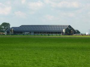Onze diensten | Agrarische projecten J.H. Ouderkerk
